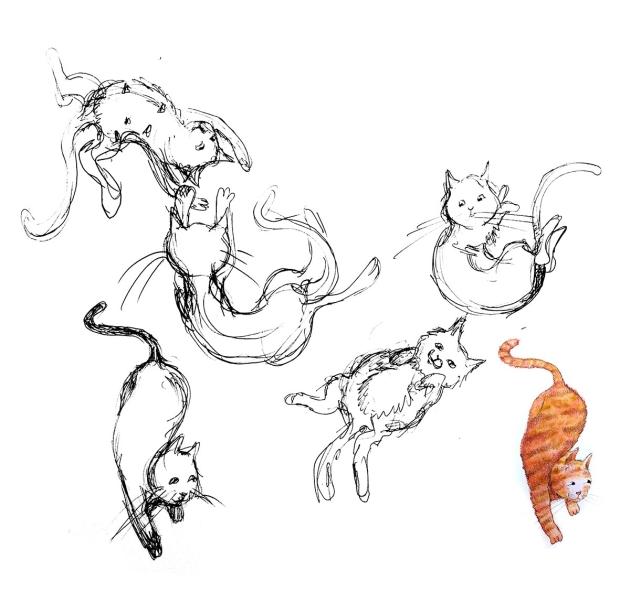 van schets naar illustratie-1